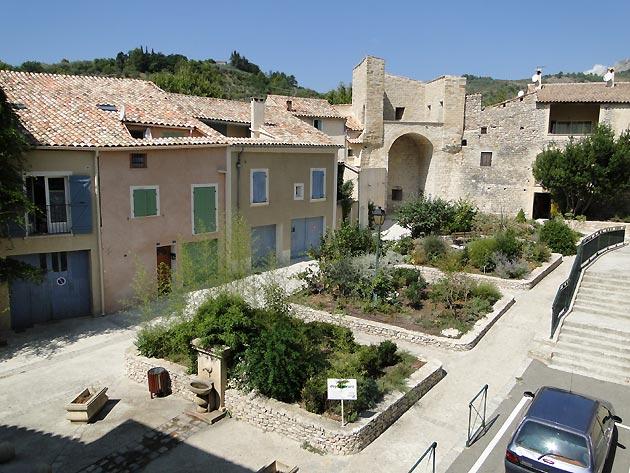 Photo jardin des plantes de l 39 office de tourisme de buis les baronnies - Office tourisme buis les baronnies ...